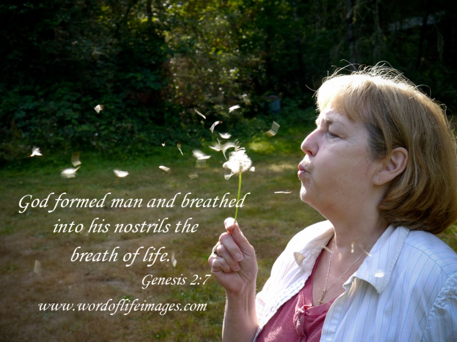 God formed man and breathed the breath of life Genesis 2:7