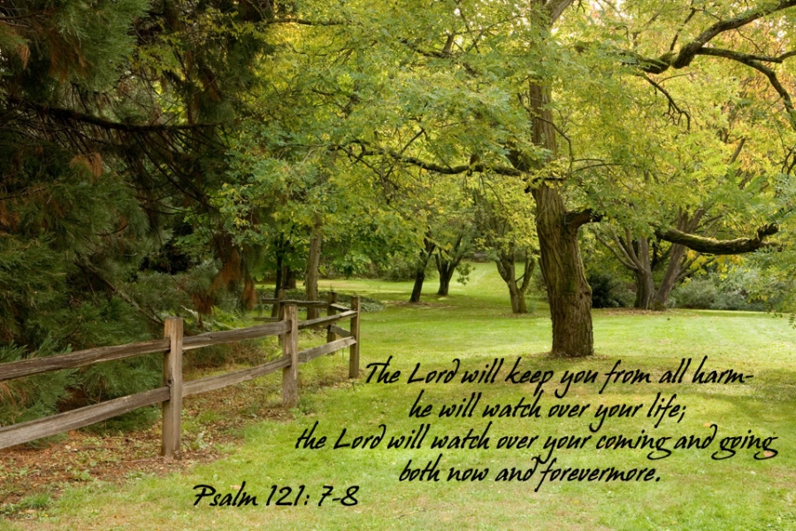 The Lord will keep you from all harm he will watch over your life. Psalm 121: 7-8